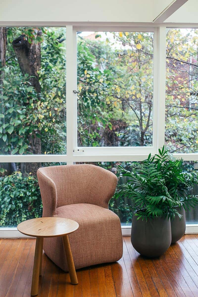 Window and plants will brighten your home