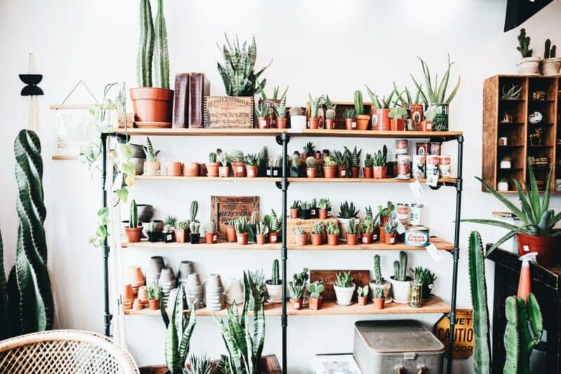 Free standing and floating shelves
